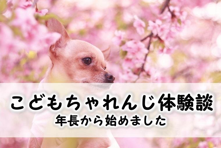 こどもちゃれんじ体験談ブログ
